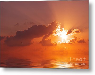 The Sunset Metal Print by Angela Doelling AD DESIGN Photo and PhotoArt