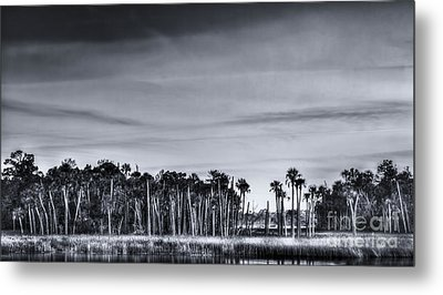Tranquil Hammock Metal Print by Marvin Spates