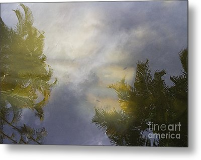 Tropical Reflections Metal Print by Anne Rodkin