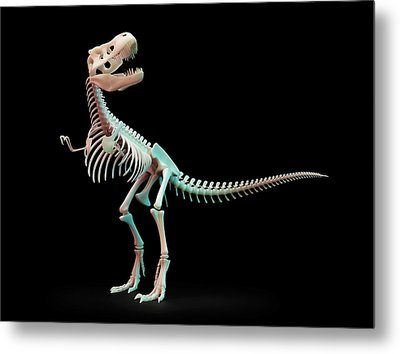 Tyrannosaurus Rex Skeleton Metal Print by Andrzej Wojcicki