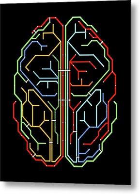 Brain Metal Print by Alfred Pasieka
