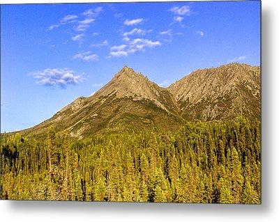 Alaska Mountains Metal Print by Chad Dutson