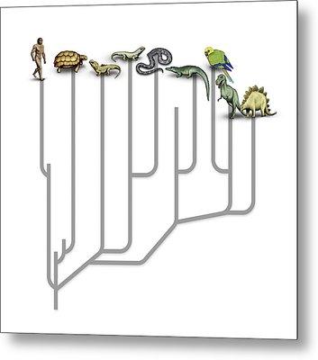 Animal Family Tree Metal Print by Mikkel Juul Jensen