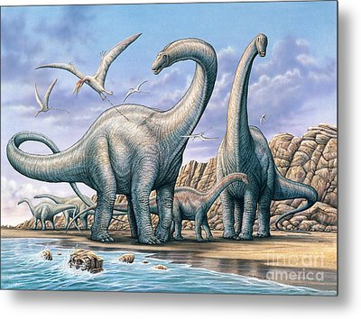 Apatosaurus Group On Beach Metal Print by Phil Wilson