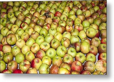 Apples Metal Print by Steven Ralser