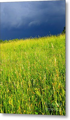 Approaching Storm Metal Print by Thomas R Fletcher