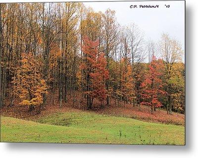 Autumn Color Metal Print by Carolyn Postelwait