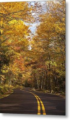 Autumn Drive Metal Print by Andrew Soundarajan