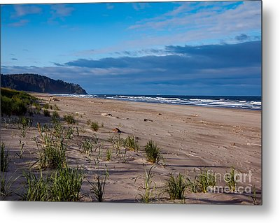 Beach View Metal Print by Robert Bales