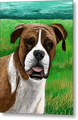 Boxer Metal Print by Heidi Creed