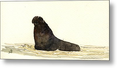 Elephant Seal Metal Print by Juan  Bosco