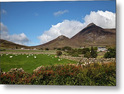 Farmland, Stone Walls In The Midste Metal Print by Panoramic Images