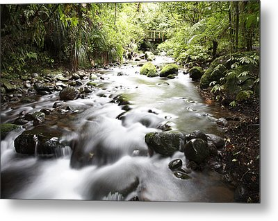 Forest Stream Metal Print by Les Cunliffe