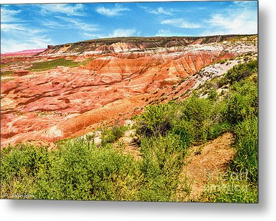 Painted Desert National Park Panorama Metal Print by Bob and Nadine Johnston