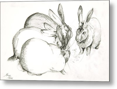 Rabbits Metal Print by Jeanne Maze