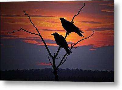 2 Ravens Metal Print by Ron Day