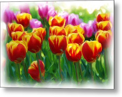 Red And Yellow Tulips Metal Print by Allen Beatty