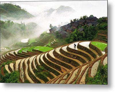 Rice Terraces Metal Print by King Wu