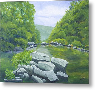 Richland Creek Metal Print by Garry McMichael