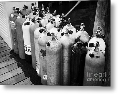 Scuba Air Tanks Lined Up On Jetty To Be Filled In Harbour Key West Florida Usa Metal Print by Joe Fox