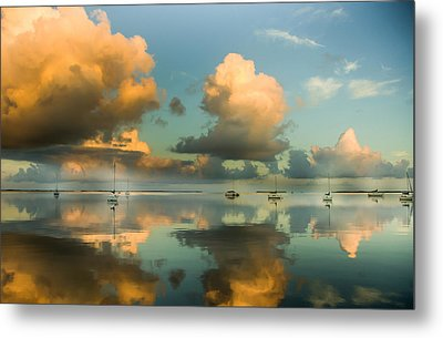 Sounds Of Silence Metal Print by Karen Wiles