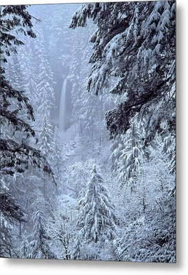 Usa, Oregon, Silver Falls State Park Metal Print by Jaynes Gallery
