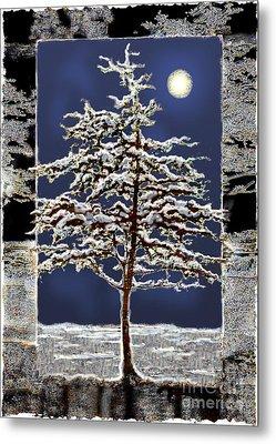 Winter Moon Metal Print by Ursula Freer