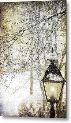 Winter Stillness Metal Print by Julie Palencia
