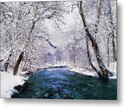 Winter White Metal Print by Jessica Jenney
