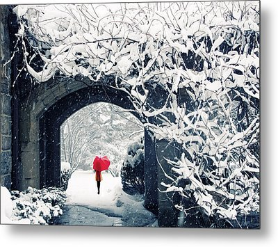 Winter's Lace Metal Print by Jessica Jenney