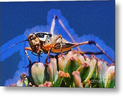 Grasshopper Metal Print by George Atsametakis