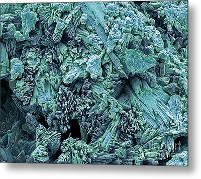 Gypsum Crystals, Sem Metal Print by Steve Gschmeissner
