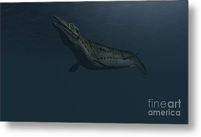 Mosasaur Swimming In Prehistoric Waters Metal Print by Kostyantyn Ivanyshen