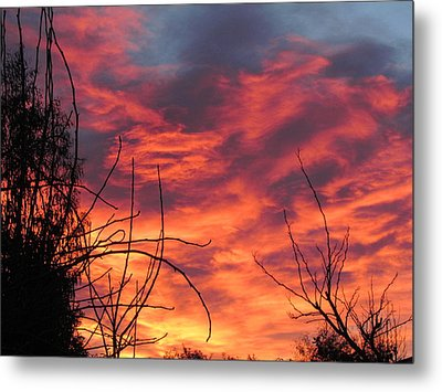 Sunset Skys Metal Print by Joyce Woodhouse