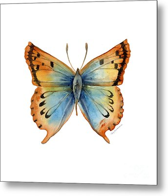 33 Opal Copper Butterfly Metal Print by Amy Kirkpatrick