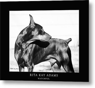 Watchful Metal Print by Rita Kay Adams