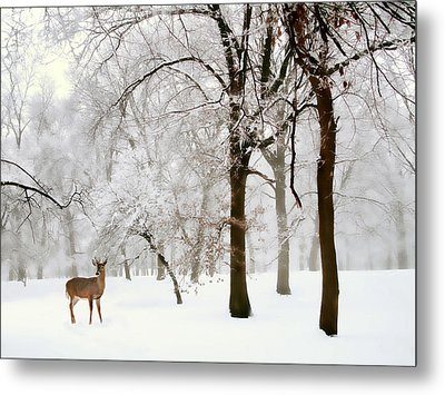 Winter's Breath Metal Print by Jessica Jenney