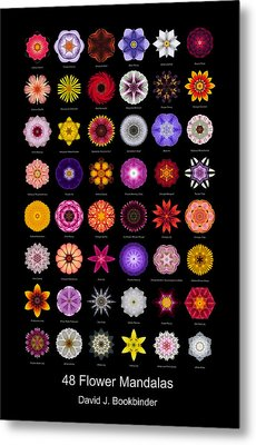 48 Flower Mandalas Metal Print by David J Bookbinder