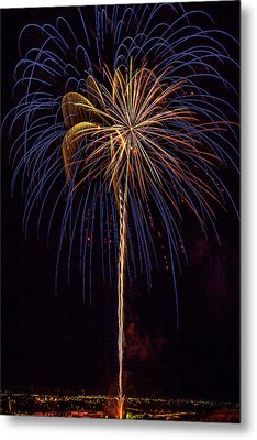 4th July #16 Metal Print by Diana Powell