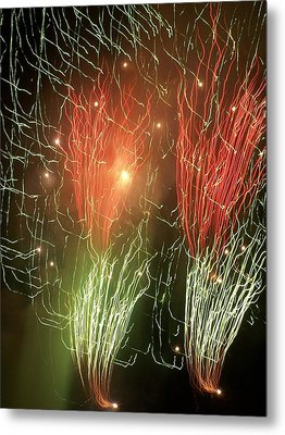 4th Of July Metal Print by Tammy McDougall
