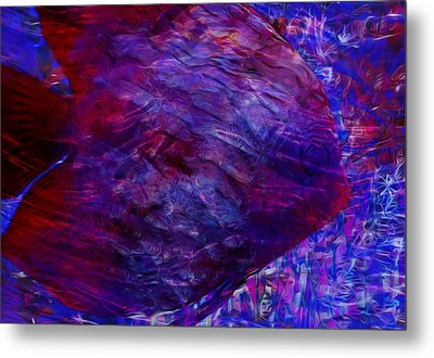 Beneath The Waves Series Metal Print by Jack Zulli