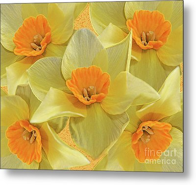5 Daffy's On Parade Metal Print by Andee Design