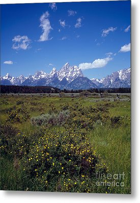 Grand Teton National Park Metal Print by Rafael Macia
