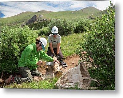 Volunteers Maintaining Hiking Trail Metal Print by Jim West