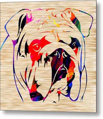 English Bulldog Metal Print by Marvin Blaine