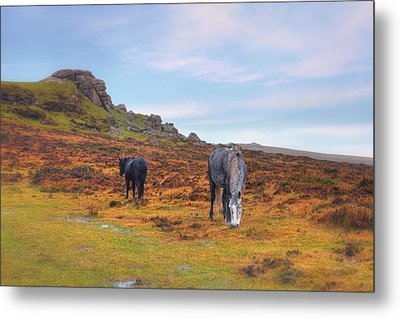 Dartmoor Metal Print by Joana Kruse