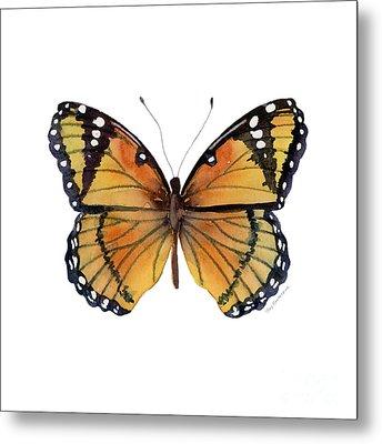 76 Viceroy Butterfly Metal Print by Amy Kirkpatrick
