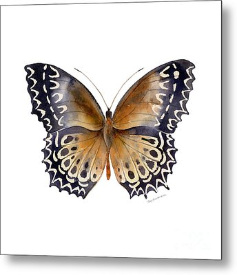 77 Cethosia Butterfly Metal Print by Amy Kirkpatrick