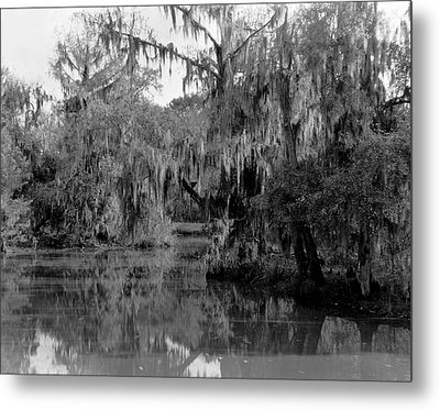 A Bayou Scene In Louisiana Metal Print by Underwood Archives