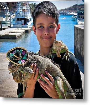 A Boy And His Iguanas Metal Print by Amy Fearn